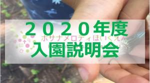 2020デザイン